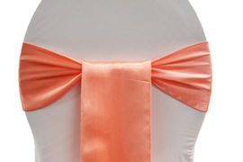 Where to find Satin, Coral - Sash in Shreveport